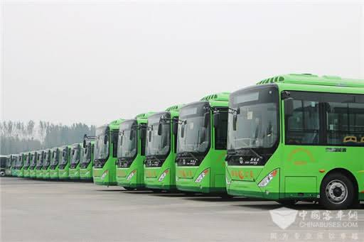Electric-Busses-for-Green-Line-project-in-Karachi-carmandee
